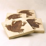 Frog Coasters