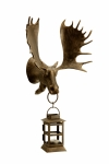 Moose Wall Mounted Lantern