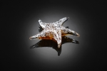 Art Glass White Starfish Sculpture