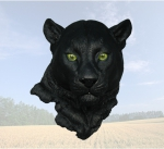 """Gaze""  Panther Head Sculpture"