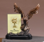 Eagle Picture Frame or Trophy
