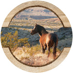 Horse & Mountain View Coasters