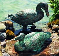 Large Pair Duck Fountains